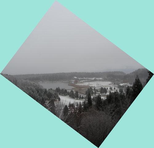 12月1日 雪