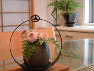 flower11_0820_2011.jpg