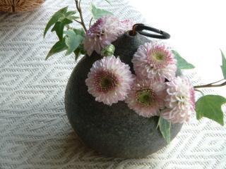 flower12_0820_2011.jpg