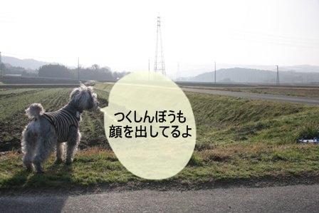summer3126.JPG
