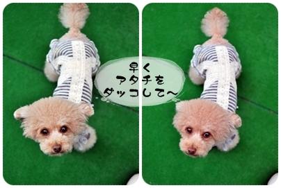2011-09-20_01.jpg