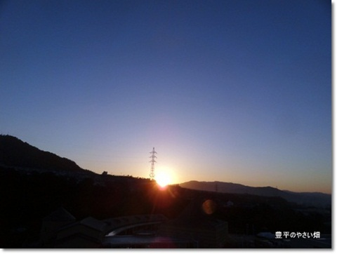 1-DSC01510.jpg
