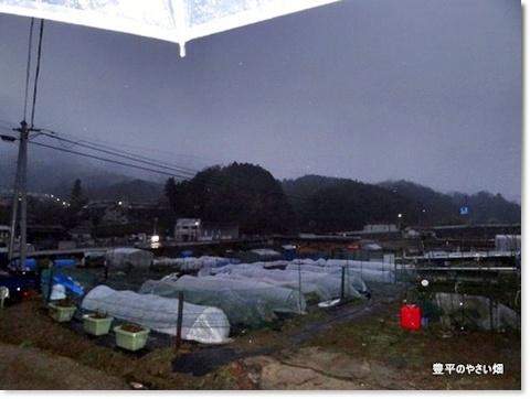 2013-11-41-DSC01085-201401211.jpg