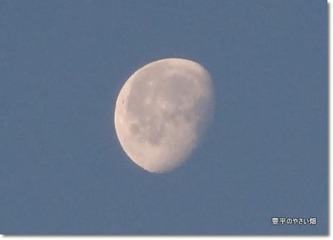 2013-11-41-DSC01101-201401211.jpg