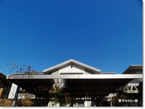 2013-11-41-DSC01625-201401291.jpg