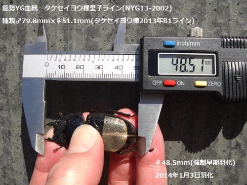 CIMG5410加工済み
