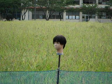 2011_0911_173511.jpg