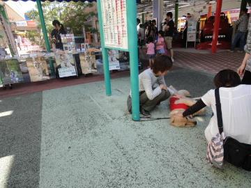2011_0924_132017.jpg