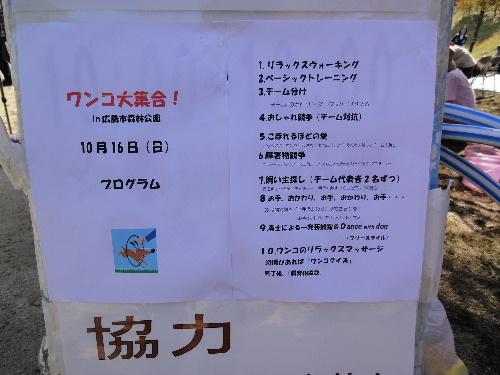 2011_1016_102807.jpg