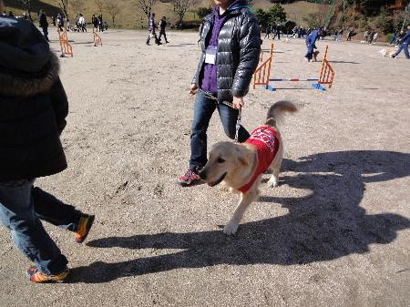 2011_1204_104011.jpg