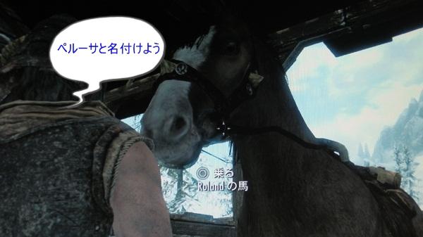 名馬に育って!