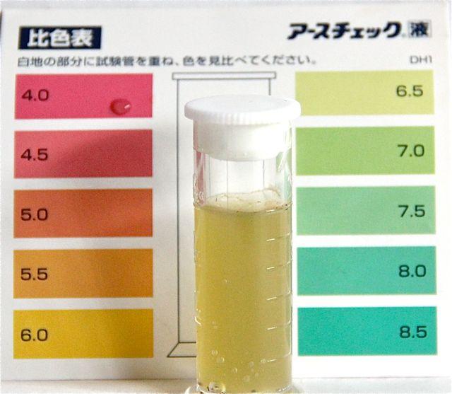 アースチェック液3