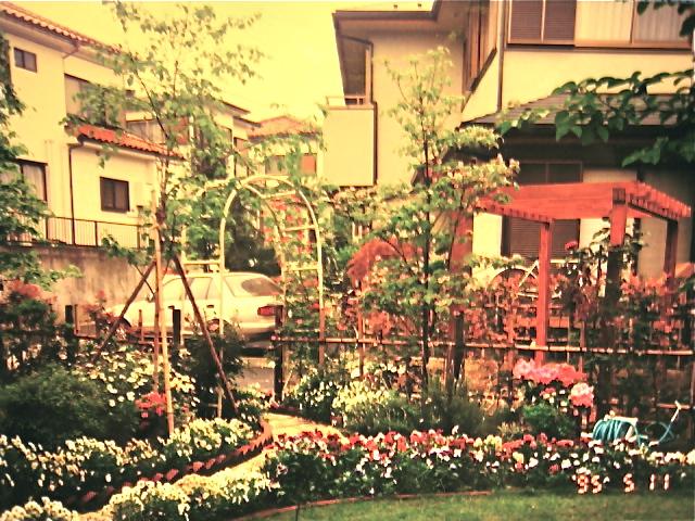 1995年の庭