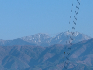 山に雪が!