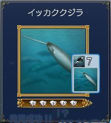イッカククジラ