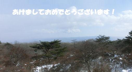 CIMG7094-12.jpg