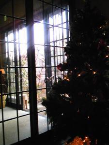 「クリスマスツリー」山荘 紗羅樹(湯布院)