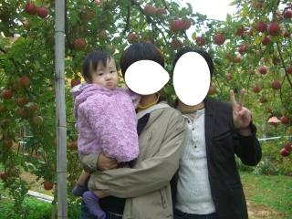 リンゴ狩り11