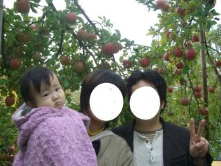 リンゴ狩り12