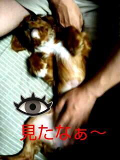 20120703_222133.jpg