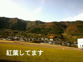 20121124_104922.jpg
