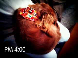 20121208_165930.jpg