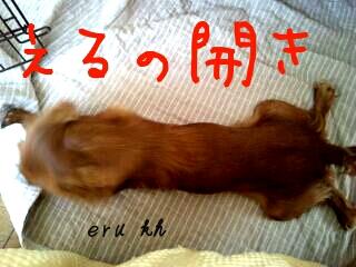 201271083636.jpg