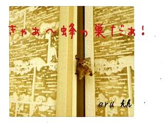 201278191253.jpg
