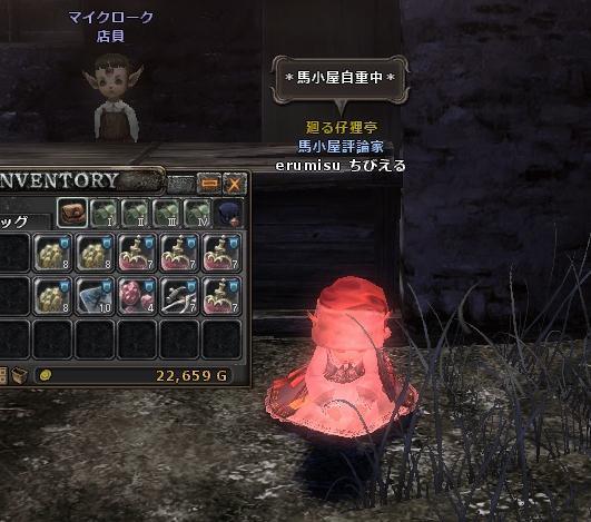 WO_20120414_041032_crop.jpg