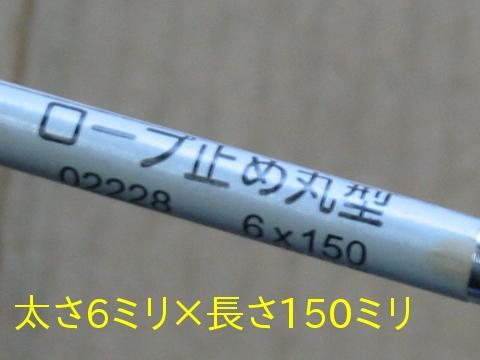IMG_2589.jpg