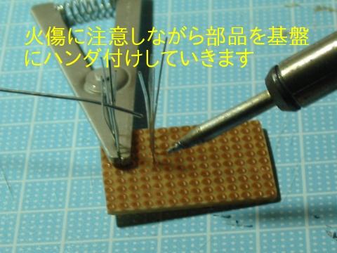 IMG_2660.jpg