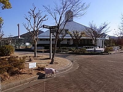 RIMG4666.jpg
