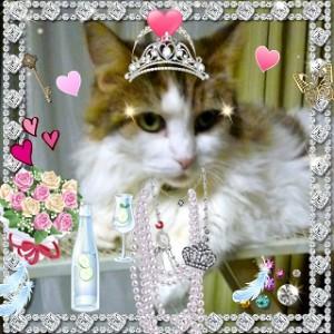 女王リリー