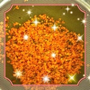 金木犀のお花