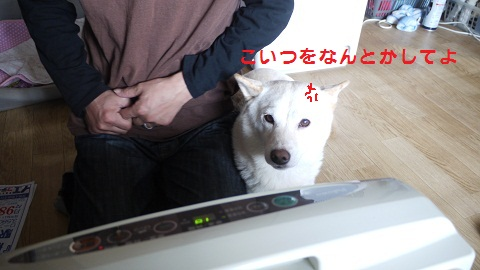 P1080301.jpg