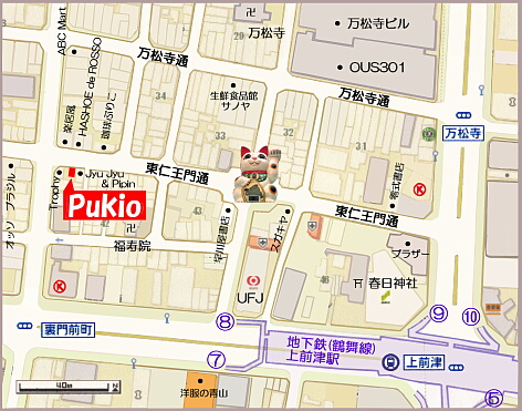 Pukio Mapa 2011-8