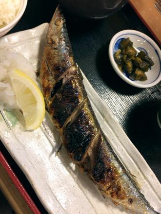 1031秋刀魚