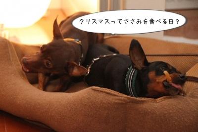 2013_12_23_9999_63.jpg