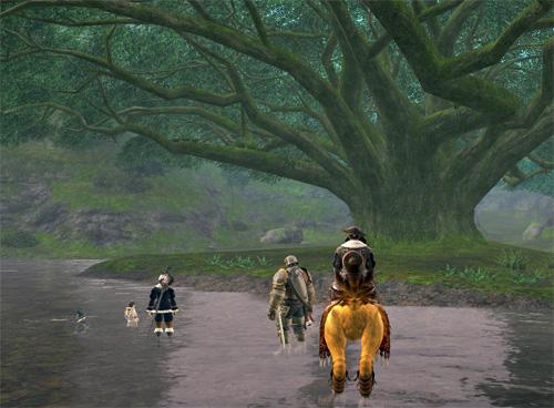 黒衣森の大きな木