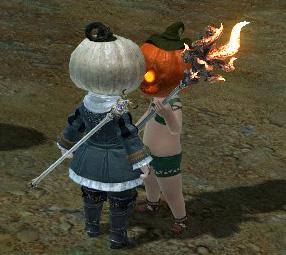 かぼちゃ対決