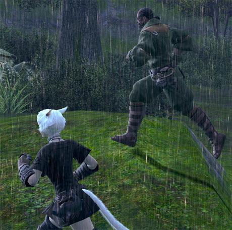 FF14ってなんなんだろう-雨の中走る