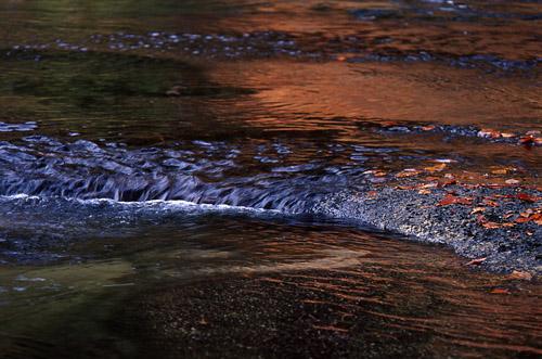 水面のパレット