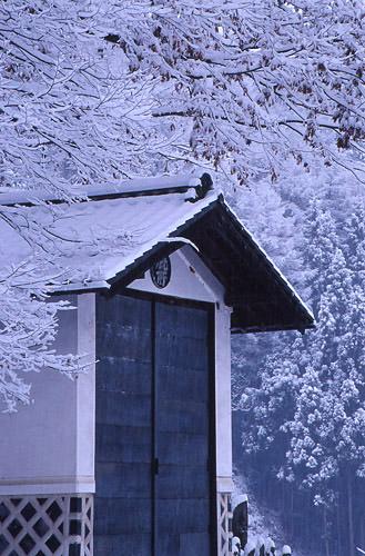 里山の雪2