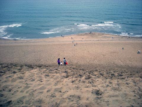 砂丘上から