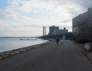 琵琶湖散歩