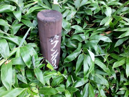 20120815蒜山縦走07