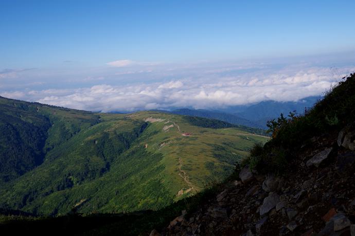 201209薬師岳21