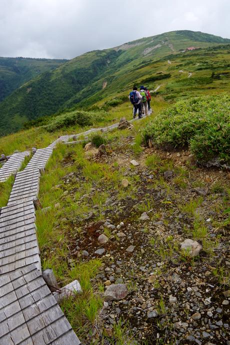 201209薬師岳38