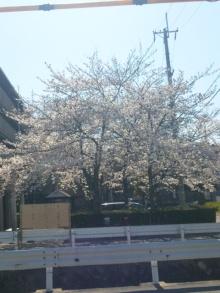 ◆金融建築家・藤原良のオフィシャルブログ-110406_143713.jpg