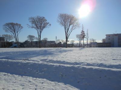 2012 01 24 雪景色